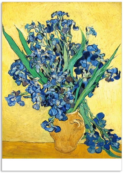 Ansichtkaart Vincent van Gogh Irissen