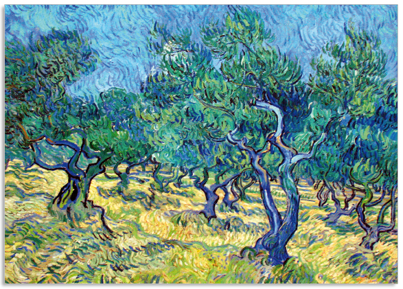 Ansichtkaart Vincent van Gogh Olijfgaard
