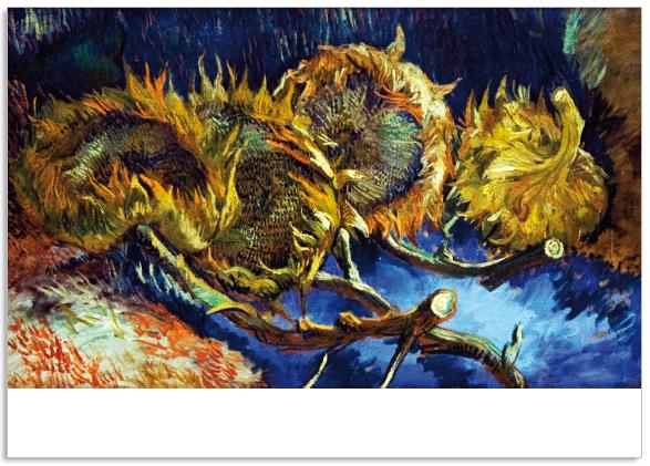 Ansichtkaart Vincent van Gogh Vier uitgebloeide zonnebloemen